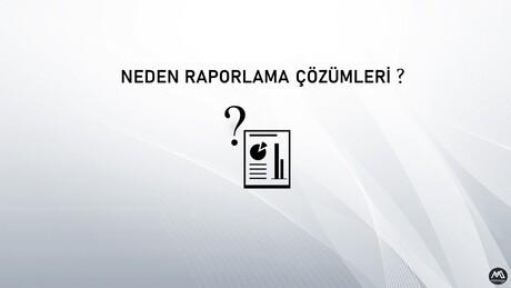 Neden Raporlama Çözümleri ?